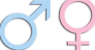 Homosexualität im Islam Transgender